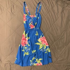 Abercrombie and Fitch Peony Print Dress